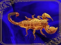 Skorpion (24. Okt. - 22. Nov.)