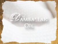 Damballah Vodou Öl