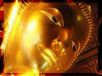 Meditation & Reflexion