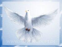 Harmonie & Frieden