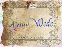 Ayida Wedo Vodou Spray